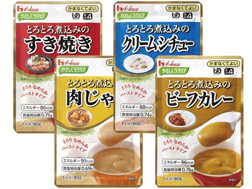 【便利な詰合せ】 やさしくラクケア とろとろ煮込み おかずセット (20食)