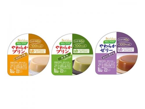 【便利な詰合せ】 やさしくラクケア やわらかプリン 3種詰合せ (36食)