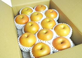 福島県産のみずみずしい和梨や爽やかな甘さの洋梨です。